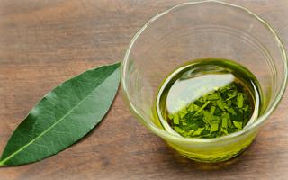 Как правильно лечить гайморит лавровым листом: рецепты и отзывы