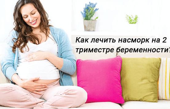 каланхоэ при беременности